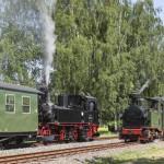 Döllnitzbahn: Steuerverschwendung bei Sachsens Schmalspurbahnen?