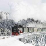Fichtelbergbahn Bahnhof Oberwiesenthal Viadukt
