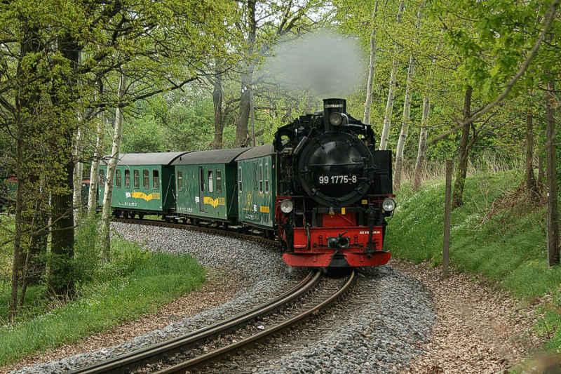 Lößnitzgrundbahn bei Friedewald im Frühling