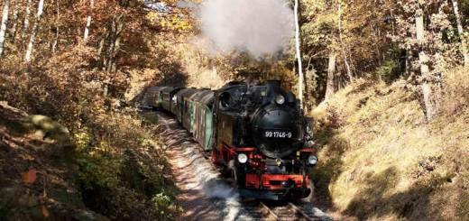 Zug der Weißeritztalbahn im goldenen Oktober