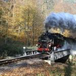 Weisseritztalbahn im Oktober im Rabenauer Grund