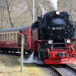 Selketalbahn: Dampfzug im Bahnhof Mägdesprung