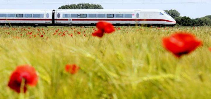 DB-Fahrplanauskunft - ICE im Kornfeld